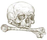 两骨交叉图形头骨 免版税库存照片