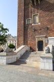 两头狮子,城镇厅塔,克拉科夫,波兰石雕塑  免版税库存图片