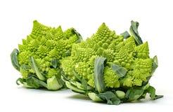 两绿色新鲜的罗马式花椰菜 免版税库存照片
