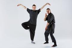 两ninja姿势和拐杖在灰色背景 库存照片