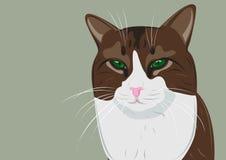 严重的猫 向量例证