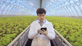 严重看在温室产业的专家屏幕 影视素材