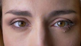严重观看和直接地入在灰色背景的照相机的年轻白肤金发的白种人妇女特写镜头眼睛画象  影视素材