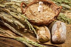 整个五谷小圆面包和一个篮子用谷物 免版税图库摄影