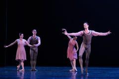 个人特殊号召力古典芭蕾` Austen汇集` 图库摄影