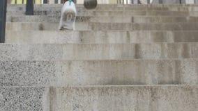 个体在努力工作以后象征性地到达台阶上面,成就 股票录像
