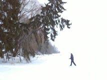 1个冬天 免版税图库摄影