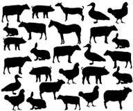 7个动物动画片农厂例证系列 免版税库存照片