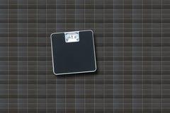 1 3个卫生间彩色插图称剪影向量 免版税库存照片