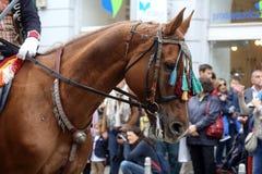 70个参加者游行,二十匹马和游行乐队的四十名成员宣布了下300 Alka 库存照片