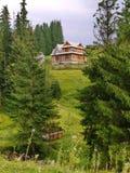 2个地板的农村木房子在绿色云杉之间的倾斜 图库摄影