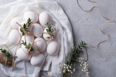 2个所有时段小鸡概念复活节彩蛋开花草被绘的被安置的年轻人 在白色织品的白色鸡鸡蛋 用玉树叶子装饰 顶视图 库存照片