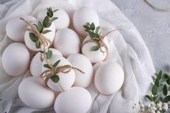 2个所有时段小鸡概念复活节彩蛋开花草被绘的被安置的年轻人 在白色织品的白色鸡鸡蛋 用玉树叶子装饰 顶视图 免版税库存图片