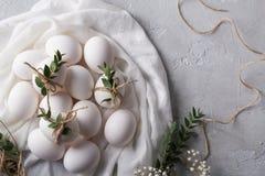 2个所有时段小鸡概念复活节彩蛋开花草被绘的被安置的年轻人 在白色织品的白色鸡鸡蛋 用玉树叶子装饰 顶视图 库存图片