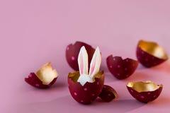 2个所有时段小鸡概念复活节彩蛋开花草被绘的被安置的年轻人 在桃红色背景,掩藏的复活节兔子的色的鸡蛋里面 免版税库存照片