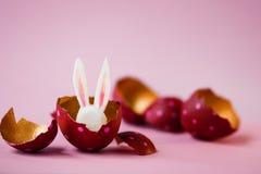 2个所有时段小鸡概念复活节彩蛋开花草被绘的被安置的年轻人 在桃红色背景,掩藏的复活节兔子的色的鸡蛋里面 与桃红色圆点的红色,里面金子 库存照片