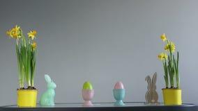 2个所有时段小鸡概念复活节彩蛋开花草被绘的被安置的年轻人 在黄色罐、复活节彩蛋和兔子小雕象的黄水仙 创造性的装饰,复活节快乐 股票视频