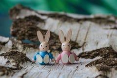2个所有时段小鸡概念复活节彩蛋开花草被绘的被安置的年轻人 在白桦树皮的两只小的木兔子 免版税库存图片