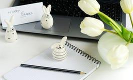 2个所有时段小鸡概念复活节彩蛋开花草被绘的被安置的年轻人 免版税图库摄影