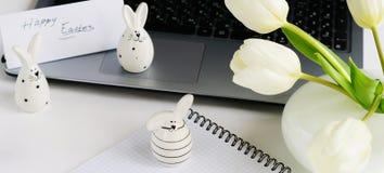 2个所有时段小鸡概念复活节彩蛋开花草被绘的被安置的年轻人 免版税库存图片