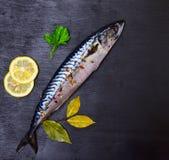 整个新鲜的鲭鱼用香料 免版税库存图片