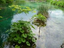 5个湖plitvice 免版税库存图片