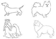 4个狗` s品种 免版税库存照片
