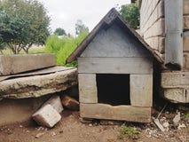 4个电缆犬科朋友房子安置被租赁的岁月 库存图片