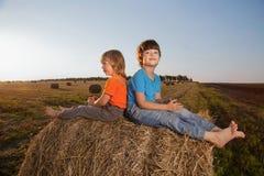 2个男孩在领域的一个干草堆 库存图片