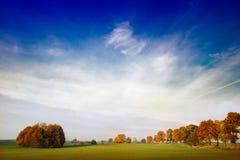 2个秋天结构树 免版税库存图片