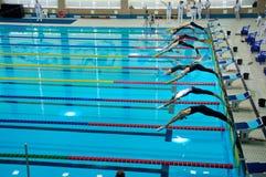 31 07 2017年- 07 08 2017个第15个Finswimming世界小辈冠军|托木斯克 库存图片