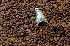 100个美国人美元钞票在烤咖啡豆放置了 库存照片