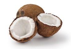 8个背景椰子eps白色 库存照片