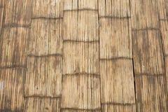 10个背景竹eps例证向量 免版税库存图片