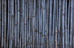 10个背景竹eps例证向量 免版税图库摄影
