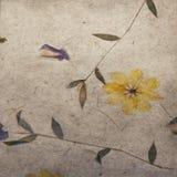 10个背景eps模式紫色向量葡萄酒墙纸 免版税图库摄影