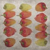 10个背景eps模式紫色向量葡萄酒墙纸 图库摄影