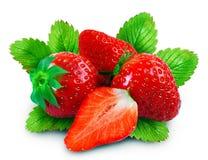 整个草莓和半 免版税图库摄影