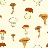 2个蘑菇 库存图片