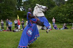 2个骑士比赛 库存照片