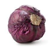 整个紫色圆白菜 图库摄影