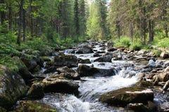 3个hdr图象山全景河垂直 Gigalan 免版税图库摄影