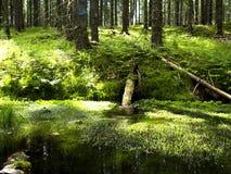 3个hdr图象山全景河垂直 免版税库存照片