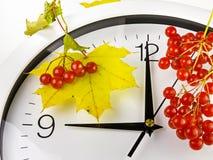 9个o `时钟 时钟、黄色叶子和荚莲属的植物 免版税库存照片