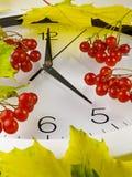 5个o `时钟 时钟、黄色叶子和荚莲属的植物 免版税图库摄影