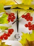 6个o `时钟 时钟表盘、黄色叶子和荚莲属的植物 免版税库存照片