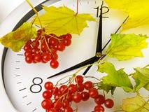 8个o `时钟 时钟表盘、黄色叶子和荚莲属的植物 库存图片