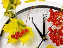 11个o `时钟 时钟表盘、黄色叶子和荚莲属的植物 免版税库存图片