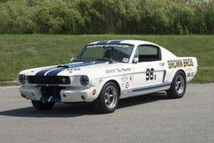 1965个shelby gt350赛车 库存照片