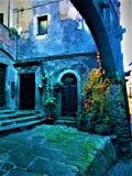 中世纪、曲拱、植物、门和石头 迷惑的角落和历史 免版税库存照片